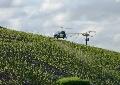 Epandage a�rien de phytosanitaires - Vers une interdiction probable d�ici 18 mois en viticulture