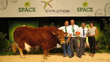 Flonflon champion limousin au Space 2014.