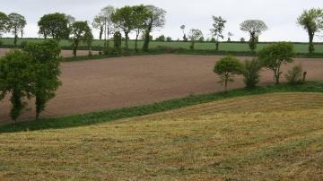 Les nouvelles mesures agro-environnementales et climatiques