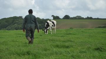 Le nombre de d�p�ts de bilan en agriculture a explos� en 2014