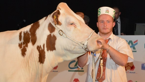Horloge (Vigor JB) Gaec élevage Cussac Fouilet (15)
