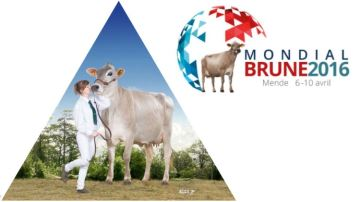 Le Mondial Brune 2016 retransmis en direct sur Web-agri