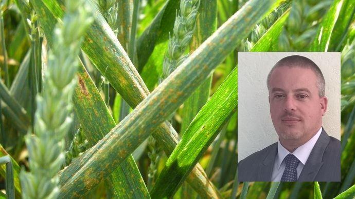 Nicolas Lemonnier, chef marchés biostimulants et biocontrôle grandes cultures d'Arysta LifeScience