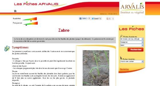 Accidents des crales - 75 fiches consultables en ligne