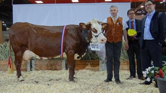 Direct du concours abondance du sia 2013 et palmar s - Palmares salon de l agriculture ...