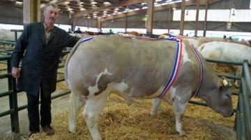 La championne du concours 2014 appartenant à Courseaux Pierre de La Cerlangue  (76)