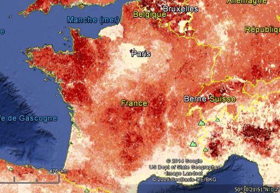 Carte de la répartition des bovins en France