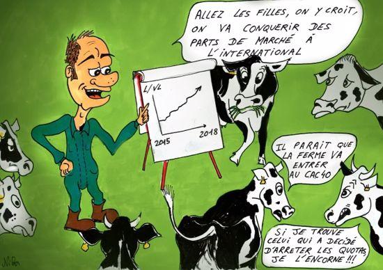 Dessin après quotas vaches laitières