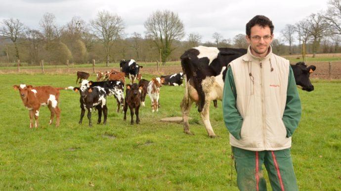Gérard Grandin vache nourrice
