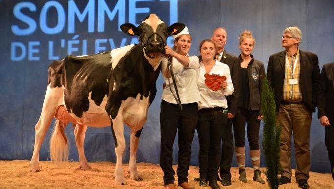 Qui succèdera à la grande championne Prim'holstein 2016 Hirma EFP (Danillo x Bolton, Gaec Parisse) ?