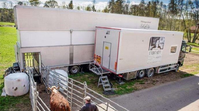 Originaire de Suède, le camion d'abattage français sera quelque peu différent: la chaine sera par exemple adaptée au gabarit des races françaises. Il répondra bien entendu à toutes les normes sanitaires imposées dans un abattoir classique.