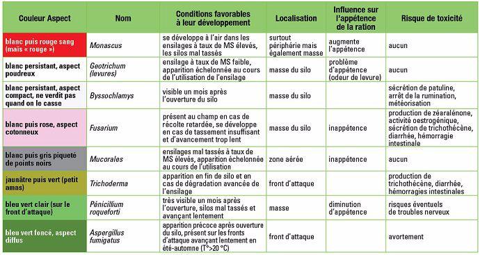 Aspect, localisation et conditions favorables au développement des principales moisissures présentes sur le maïs fourrage ensilé.