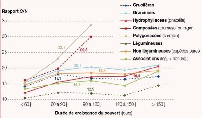 Rapport C/N des principales familles de cultures intermédiaires en fonction de leur durée de croissance (en jours)