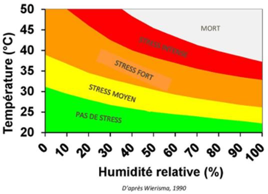 Stress thermique chez la vache laitière