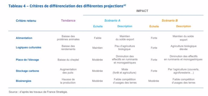 Critères de différenciation des différentes projections