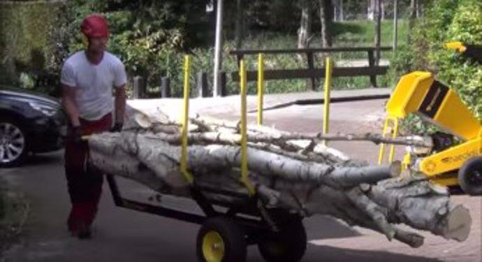 haecksler-treetruck