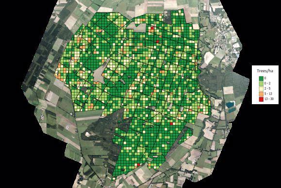 Différents carrés de couleurs indiquent le nombre d'arbres moyen pour chaque hectare