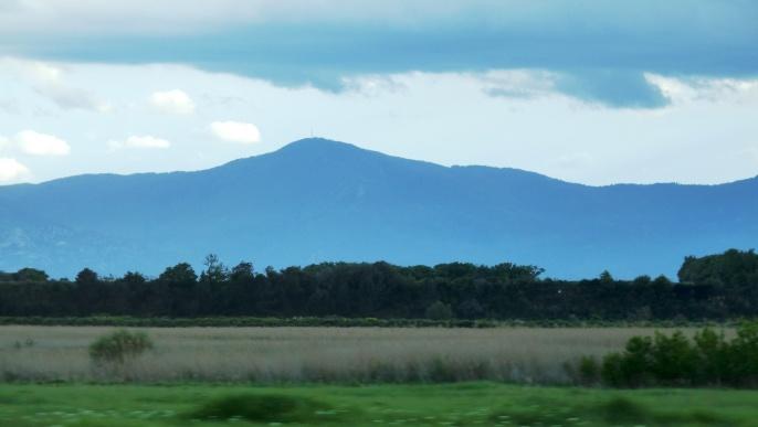 Les Pyrénées, un des espaces naturels où  la biodiversité des espèces est particulièrement rès préservée.