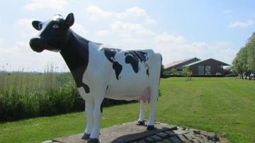 Le Dairy Campus, une « Silicon Valley laitière »