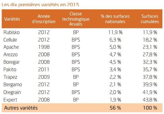 Les variétés de blé tendre les plus semées en 2015.