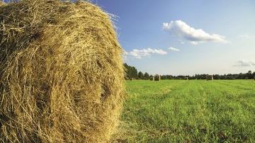 Le contrat d'assurance pour les prairies du Crédit Agricole