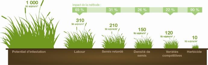 Bénéfice des solutions agronomiques combinées aux herbicides (synthèse de 80 expérimentations sur vulpin - Rothamsted 2013)