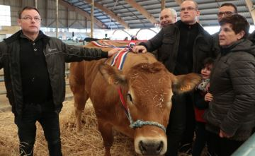 Plus de 500 animaux haut de gamme pour la fête de la viande de Rethel