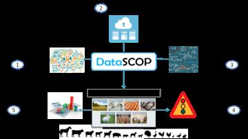 Datascop, la base de données au service de l'élevage