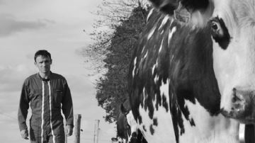 Six éleveurs récompensés pour leurs photos et vidéos