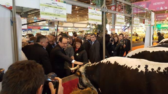 François Hollande au 54e salon de l'agriculture