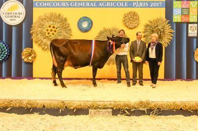 Palmar s concours race rouge flamande au salon de l 39 agriculture 2017 - Palmares salon de l agriculture ...