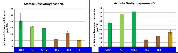 Activité microbienne des sols en labour et en semis direct.