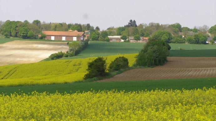 Le budget consacré aux aides couplées végétales s'établit à 144,8 M€ pour la campagne 2017, dont 94 M€ réservés à la production de légumineuses fourragères pour les éleveurs.