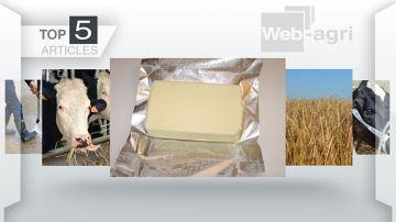 Les préférences des lecteurs de Web-agri pour la semaine écoulée