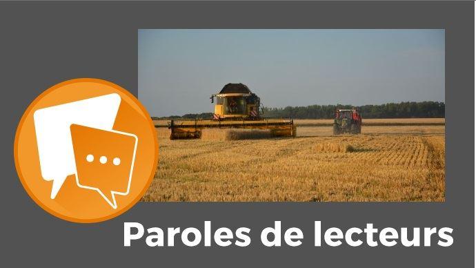 Moissonneuse dans un champ de blé