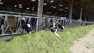 Julie Collin-Renard, éleveuse: «Je m'épanouis dans monmétier d'agricultrice»
