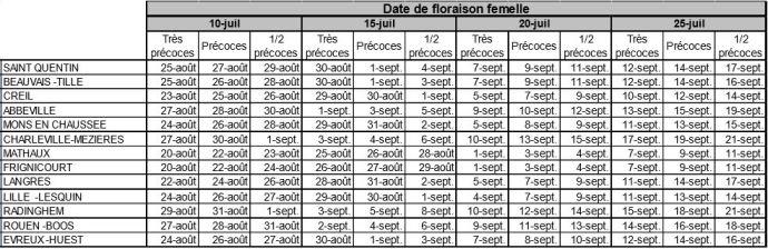 Arvalis estime les dates de récolte des ensilages de maïs à partir des dates de floraison