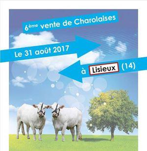 6ème vente charolaise Origenplus à Lisieux