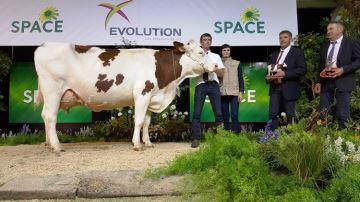 Hexode à l'EARL Dabo remporte le titre de grande championne du Space