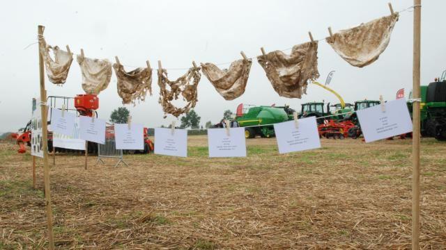 Le niveau de dégradation du coton illustre l'activité microbienne.