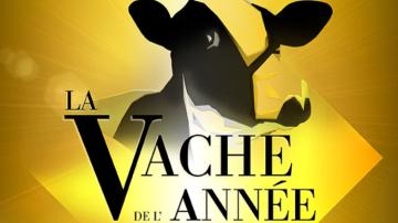 Participez au concours de la vache de l'année