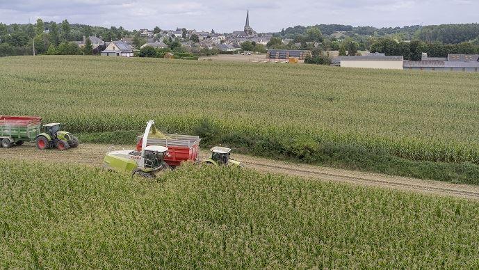 Ouvertes depuis 1988 aux entreprises agricoles, les procédures judiciaires offre aux agriculteurs en difficulté un cadre réglementé et sécurisé pour leur permettre de redresser leur entreprise.