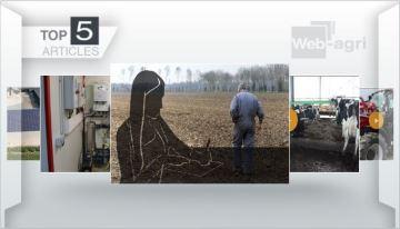 Suicide des éleveurs, ferme des 1000 vaches et bien-être, essai Case IH Luxxum