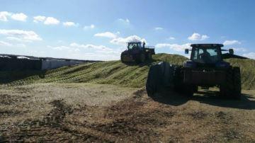 73,5% des éleveurs sont satisfaits de leurs rendements de maïs