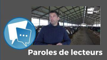 Les animaux sont-ils heureux dans la ferme des 1000 vaches  ?