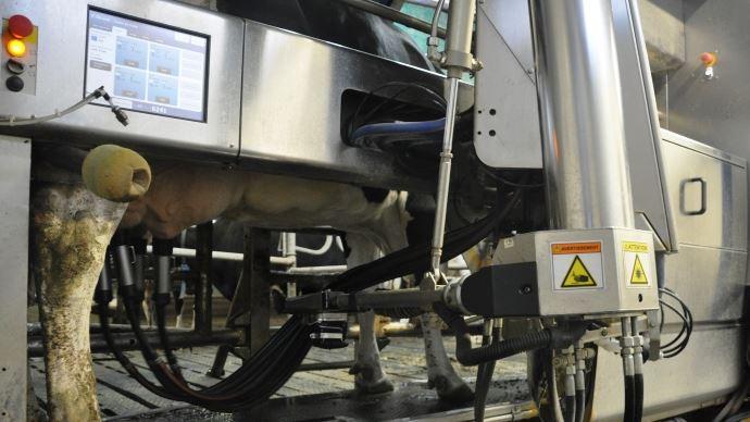 L'application Canopée de Sanders recense les différentes données d'un élevage laitier pour les analyser sur une seule et même plateforme