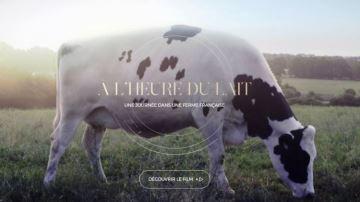 Le Cniel propose un webdocumentaire au grand public sur l'élevage laitier