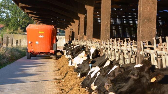 Guide de la ration mélangée pour les éleveurs de ruminants