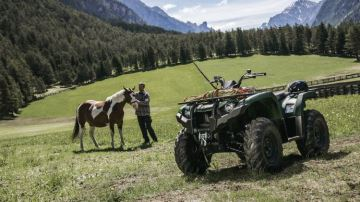 Quad: un utilitaire agricole de plus en plus présent dans les fermes