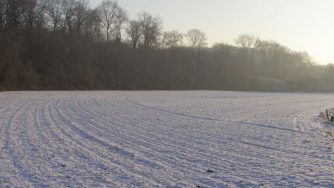 Les conditions climatiques en Europe inquiètent les opérateurs.